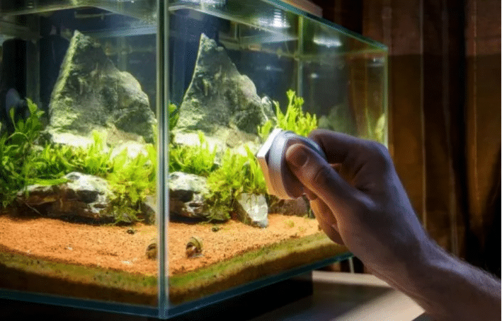 Cleaning Aquarium Glass How To Clean The Glass Without Scratching It